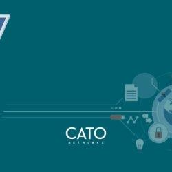 cato-banner-11005-3